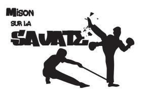 mison, savate, mison sur la savate, club, boxe, francaise, canne, combat